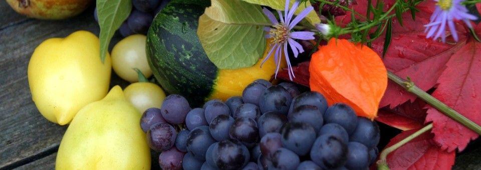 Assorted fruit at Murwillumbah Farmers Market