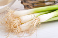 spring-onions-25703524