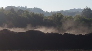 Cropped Steaming pile Dec 15 (2)
