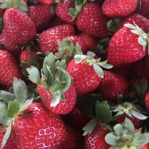 Strawberries 16
