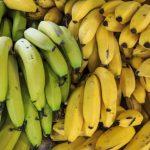 bananas-with-good-light